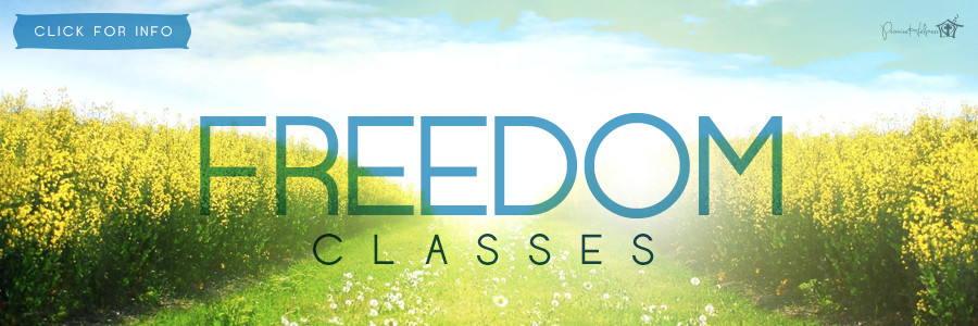 Freedom Classes